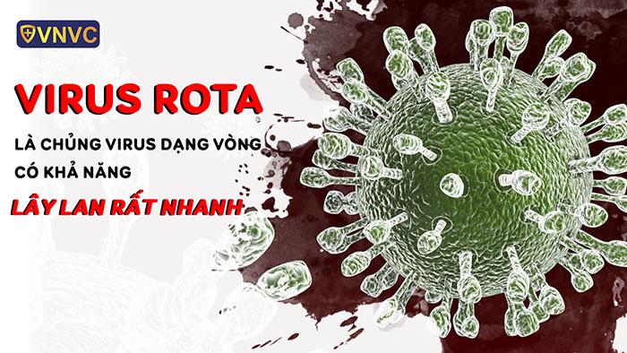 Virus Rota là virus dạng vòng có khả năng lây lan rất nhanh