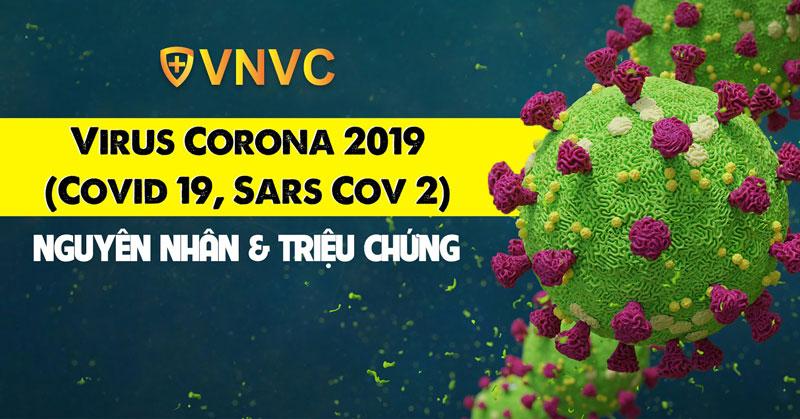 Virus Corona 2019 (Covid 19, Sars Cov 2): Nguyên nhân & triệu chứng